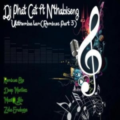 Dj Phat Cat - Ulithemba Lam (zola Emoboys Drum N Bass Drag Remix) Ft. Nthabiseng